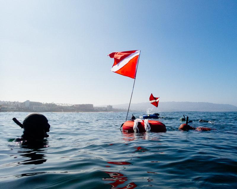 090918 Dive Redondo-1.jpg