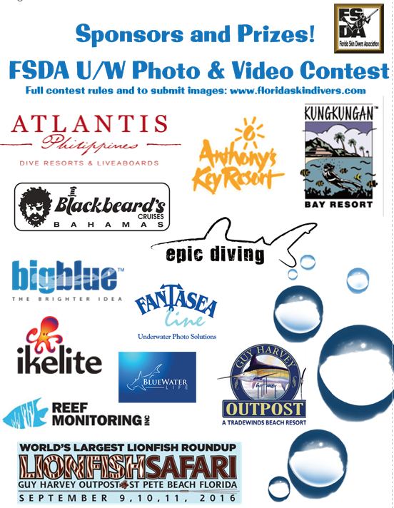 2016 FSDA Contest Sponsors.png