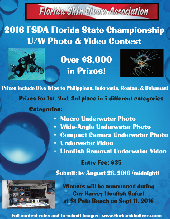 2016 FSDA Florida Photo Contest.png