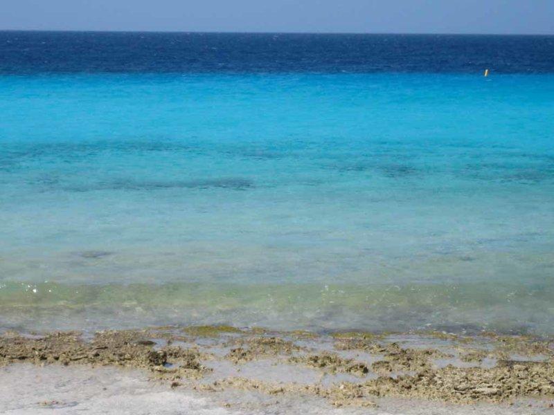 Added Bonaire Files272.jpg