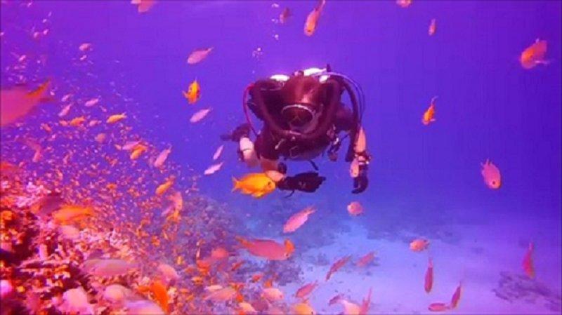 Argonaut Kraken Gulf of Aqaba Haql Red Sea 7 July 2017 ii.jpg