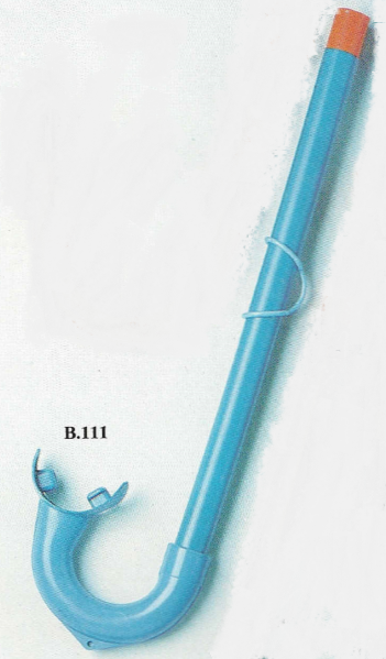 B111-Turtle-2.png