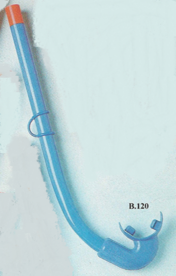 B120-Starfish-2.png