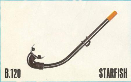 B120-Starfish.png