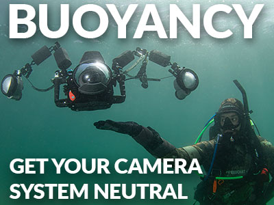 Best-Buoyancy-Underwater-SB.jpg