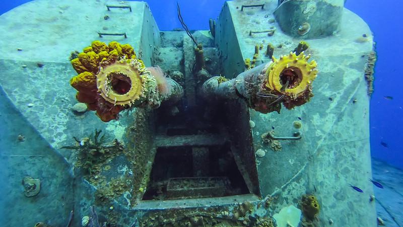 Cayman%20Brac%20Underwater%20%281%20of%203%29-3-L.jpg