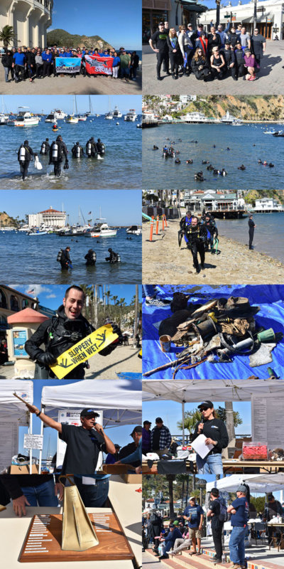 DDDB 802 harbor cleanup 2019 sm.jpg