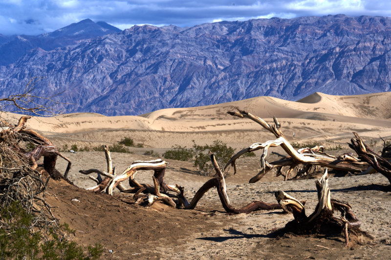 Death Valley 053.jpg