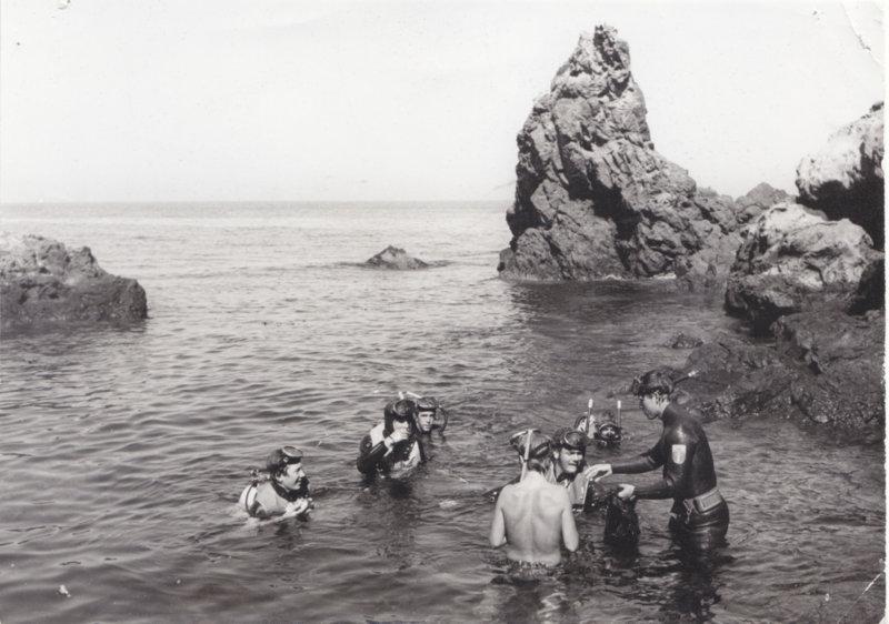 diving at Toyon 02.jpg