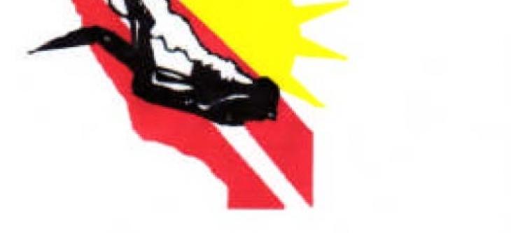 dp-logo_0.jpg