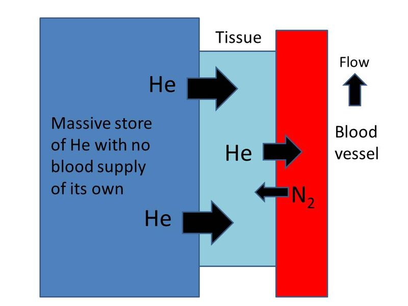 IBCD diagram 3.jpg