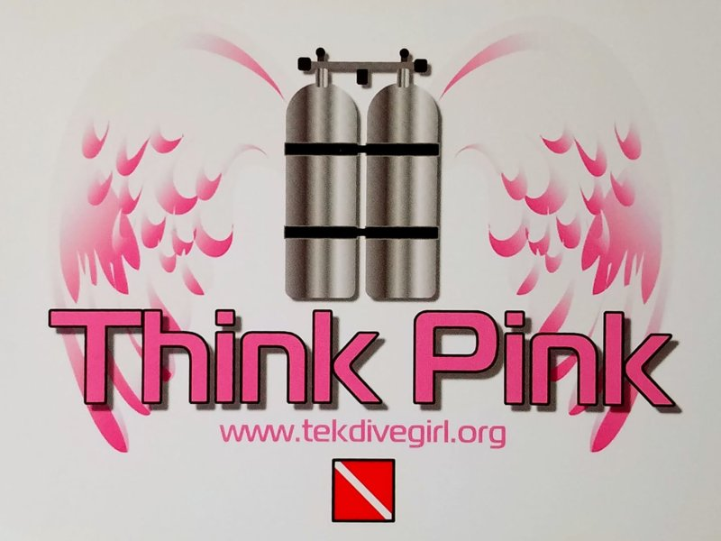 Kimber Think Pink wings.jpg