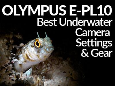 Olympus-E-PL10-Underwater-Settings-Banner-SB.jpg