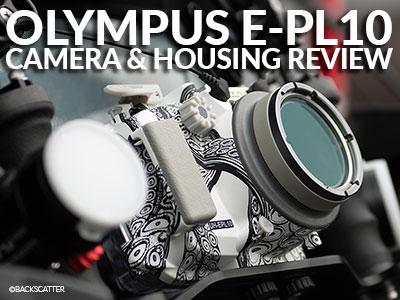 Olympus_E-PL10_Review_Robin_Dodd_Banner_3-SB.jpg