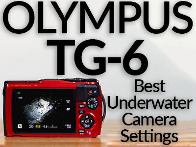 Olympus_TG-6_Settings_Banner-SB.jpg