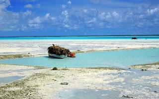 pacific-island.jpe