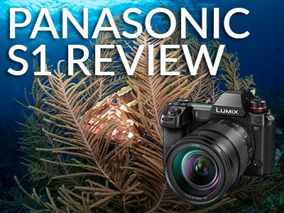 Panasonic_S1_Review_Dylan_Silver_Banner-Scubaboard-2.jpg