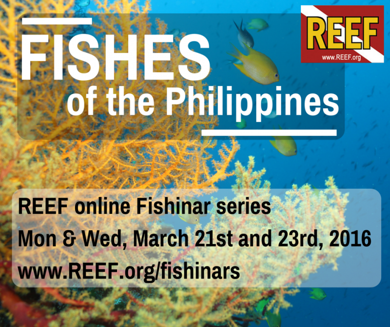 philippinesfishinar.png