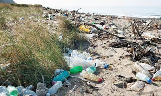 plastic-british-beach.jpg