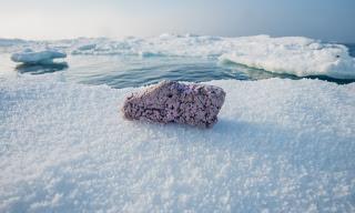 plastic-pollution-arctic.jpg