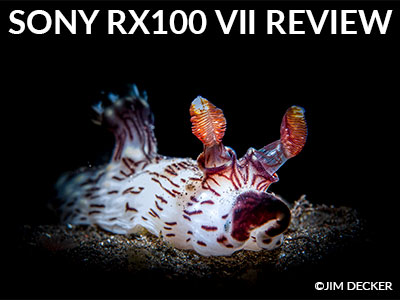 Sony-RX100-VII-Review-Jim-Decker-Banner-SB.jpg