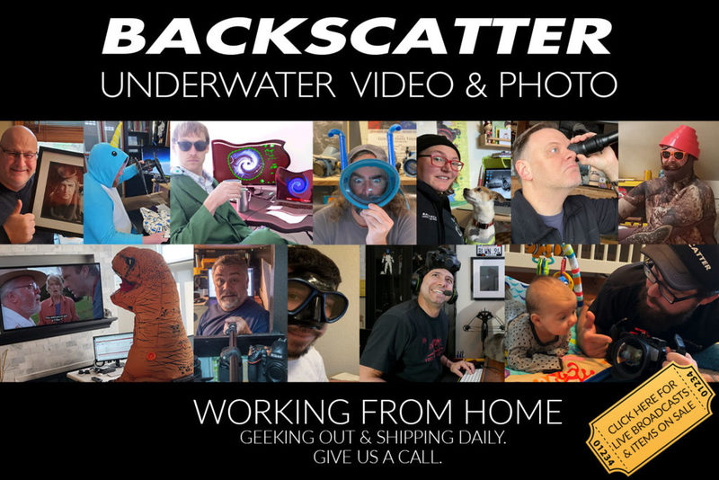 Work-From-Home-Banner-3-SB-1024x683.jpg