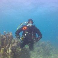 divingsteph67