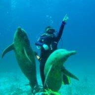 BrackaFish