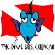 TheDiveBus